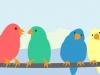 Header_01_birds