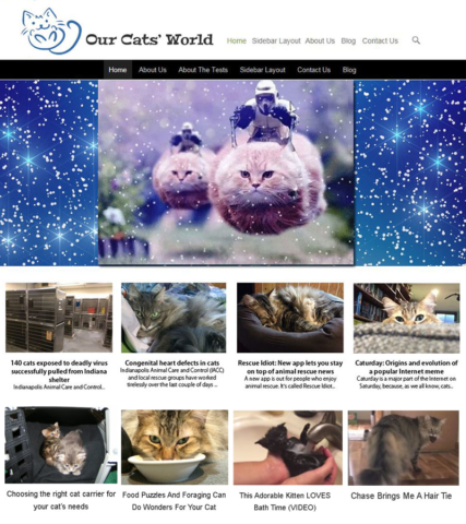 2015: Designed logo and prototype for Our Cats' WOrld.