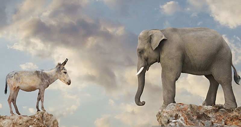 How do liberals talk with today's conservatives? Very unproductively, I'm afraid. 'Conservatives' are now so radical, we need to call them something else....Illustration with donkey and elephant facing off across the abyss.