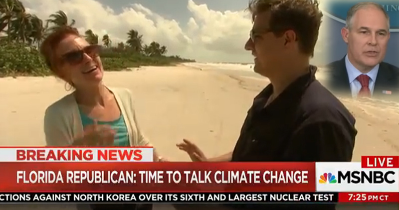 "Photo with MSNBC's Chris Hayes and Collier County's GOP Chair Penny Taylor discuss climate change in Florida. As Hurricane Irma blew into Florida, the EPA's Scott Pruitt said, ""now is not the time to talk about climate change."" This GOP official can't stop laughing."