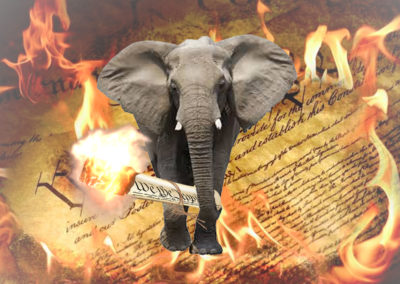 GOP elephant burning US Constitution. For AddictingInfo.Com.