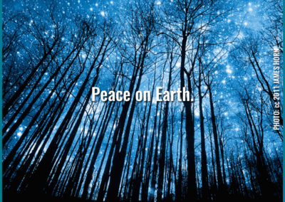 "Reverb Press meme - ""Peace on Earth"" with tall tree silhouettes against starry sky."