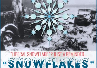 "Meme: ""Liberal Snowflake?"" Snowflakes Destroyed Hitler's Army."