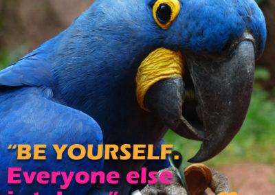 Fabweb meme - Be yourself, everyone else is taken. - Oscar Wilde.