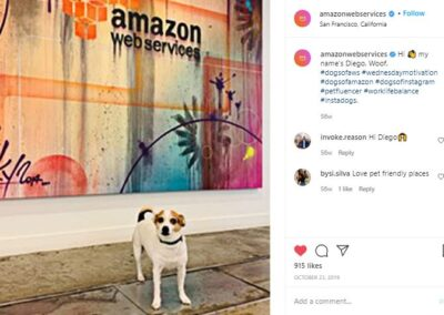 Dogs of AWS - Diego post